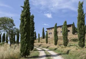 Rustici e Casali in Vendita a Passignano sul Trasimeno #4