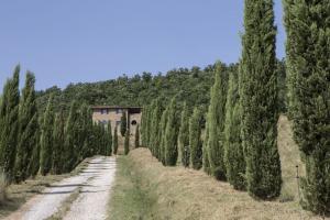 Rustici e Casali in Vendita a Passignano sul Trasimeno #21