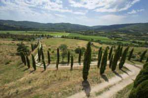 Rustici e Casali in Vendita a Passignano sul Trasimeno #19