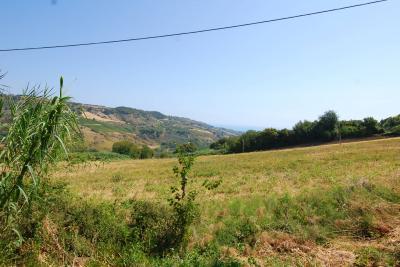 Rustici e Casali in Vendita a Monteprandone #5