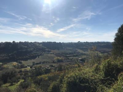 Centri Storici in Vendita a Campofilone #5