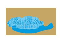 Scheda Agenzia: Immobiliare Mare e Colline srl a San Benedetto del Tronto (Alessandria)