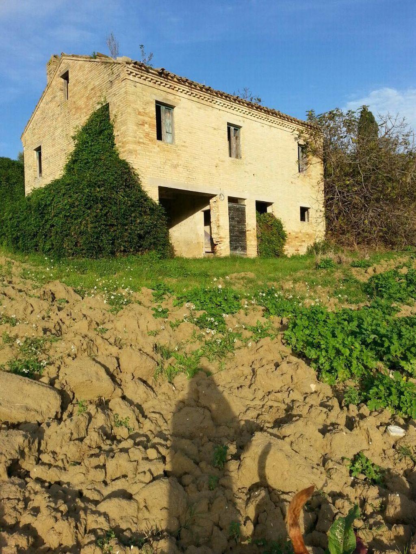 rustici e casali in vendita a montelparo codice 554